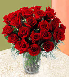 24 Red Long Stemmed Roses