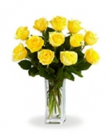 12 Long Stemmed Yellow Roses