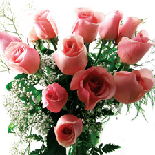 12 Long Stemmed Pink Roses - buy flowers online