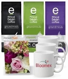Ethical Bean Coffee Trio