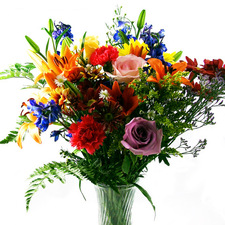 Colourful Inspiration - buy flowers online