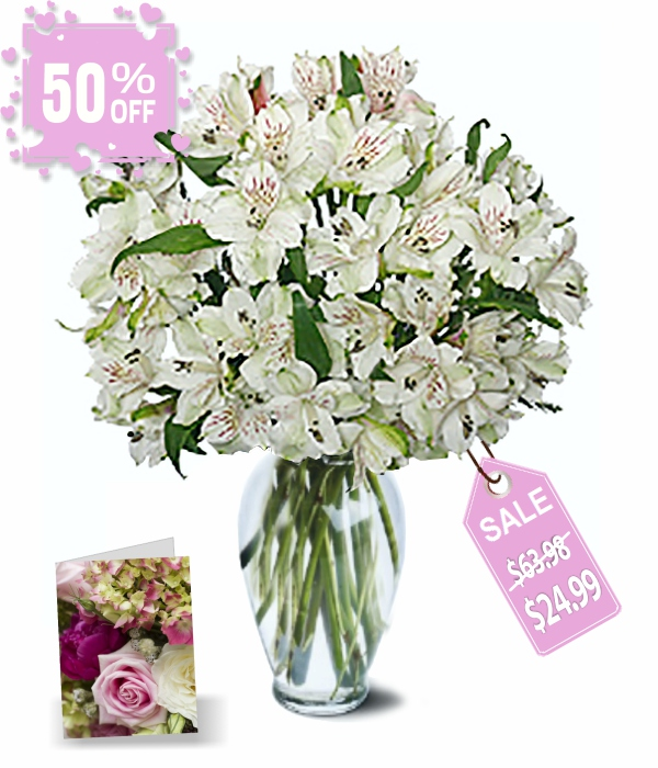 50 Blooms of Easter Alstroemeria I