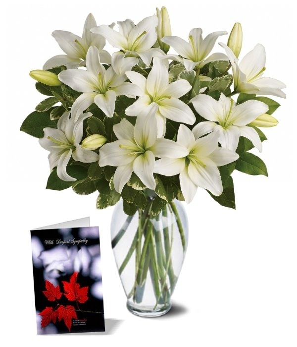 Heavenly Lilies