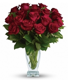 18 Red Long Stem Roses