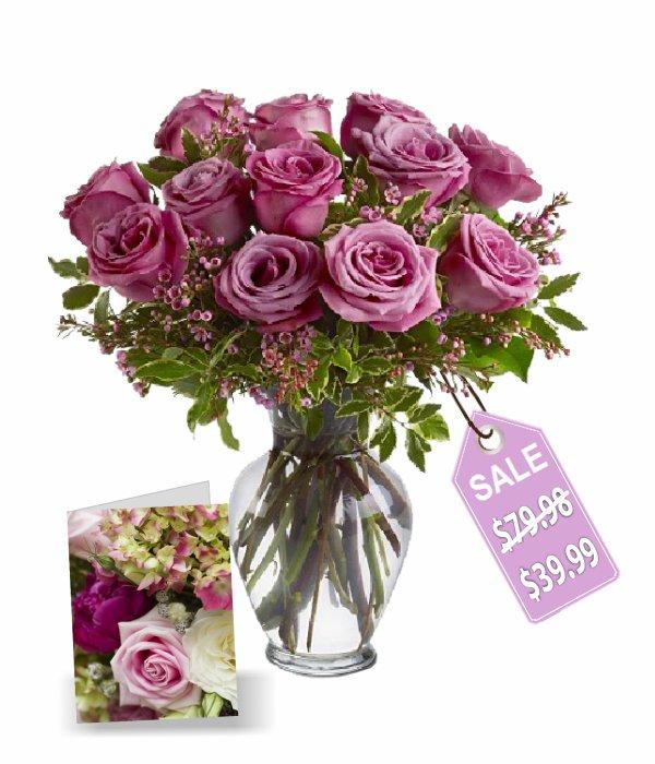 Une douzaine de roses de lavande I