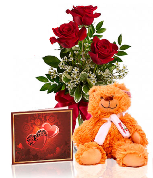 Roses & Teddy Special buy online at Bloomex.ca
