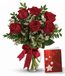 Six Christmas Roses