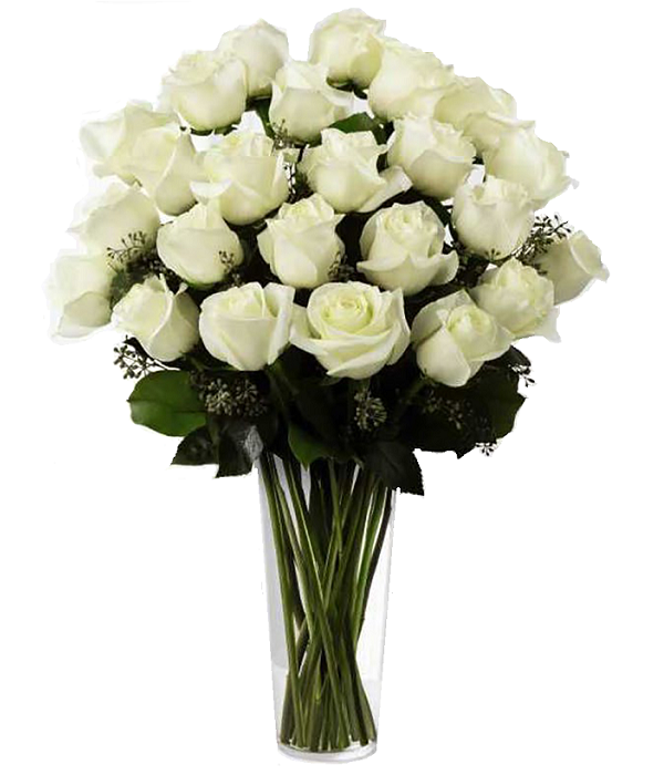 Two Dozen Long Stemmed White Roses