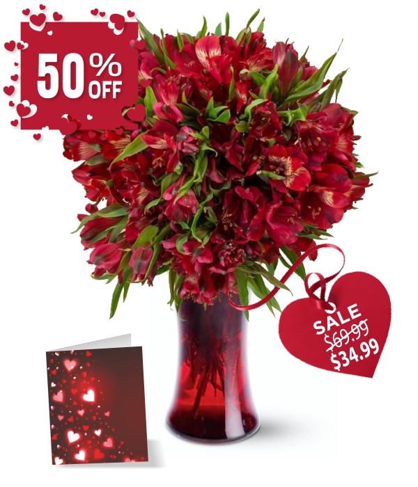 50 Blooms of Valentine Alstroemeria I