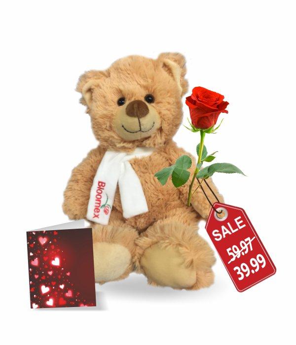 Teddy, Rose & Card