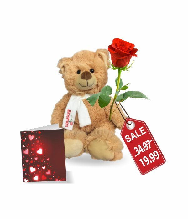 Teddy, Rose & Card