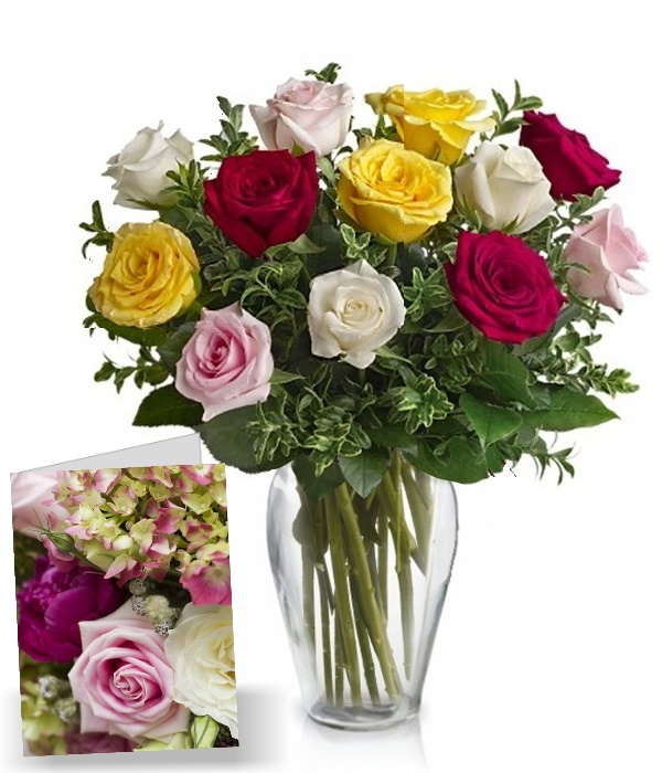 One Dozen Assorted Roses & Card