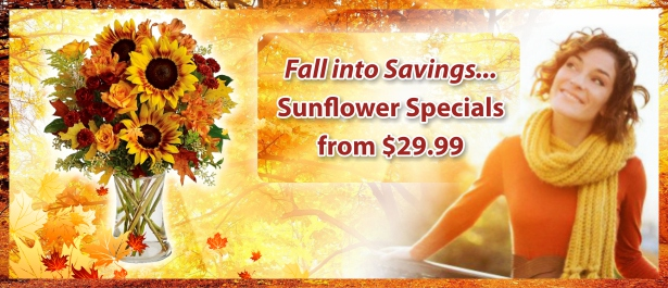 slider_Fall into Savings - English.jpg