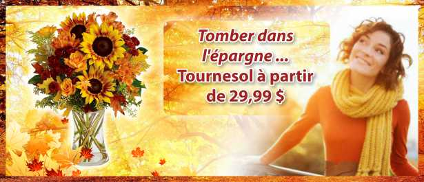 slider_Fall into Savings - French.jpg
