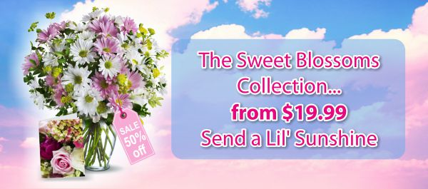 slider_Sweet Blossoms.jpg