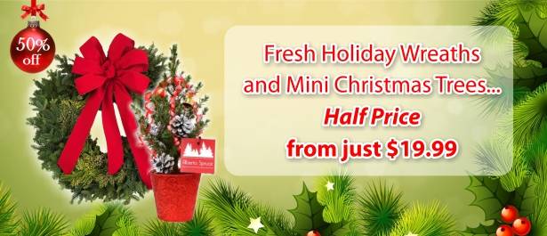 slider_Wreath anmd Mini Tree Banner en.jpg