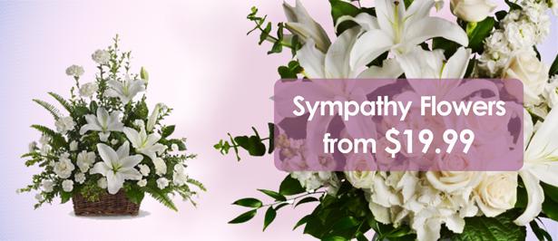 slider_sympathy_flowers_en1.png